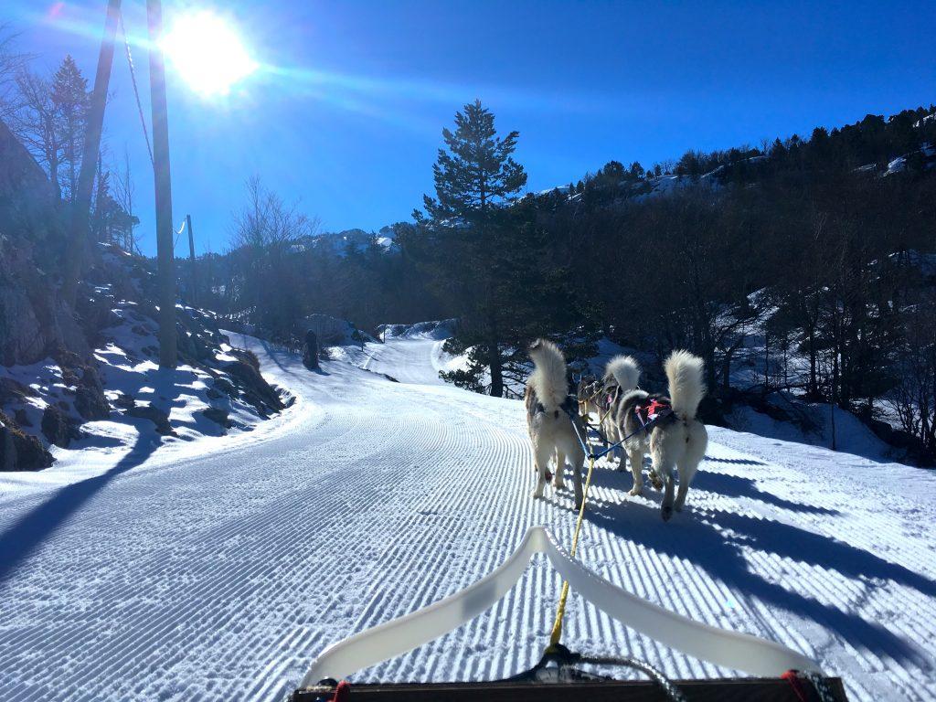 Les soeurs Coquillettes font du ski !